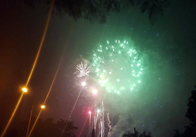 Người dân hào hứng thưởng thức pháo hoa mừng năm mới - 33