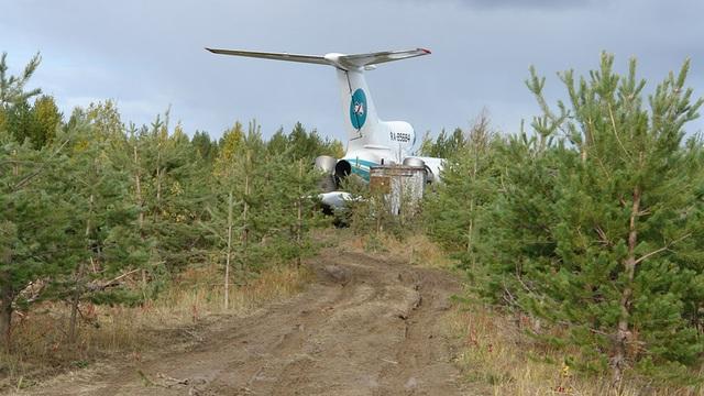 Máy bay đâm vào rừng cây sau khi hạ cánh khẩn cấp. (Ảnh: Sputnik)