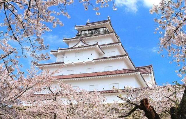 Nhật Bản – điểm đến ngắm hoa anh đào lý tưởng nhất thế giới