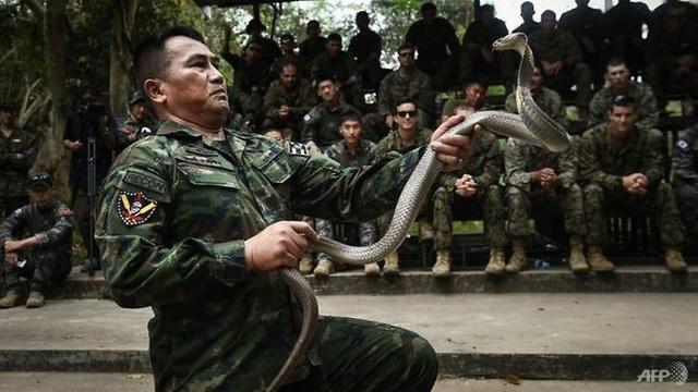 Màn trình diễn đối phó với rắn. (Ảnh: AFP)