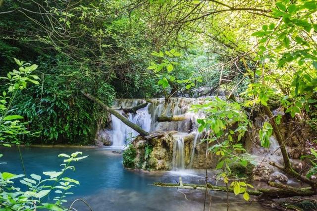 Thảm thực vật tươi tốt bao quanh thác nước Krushuna ở Bulgaria. Tại đây, nhiệt độ nước ở ngưỡng 58 độ C, được các chuyên gia cho biết rất tốt với người mắc chứng thấp khớp hoặc những bệnh về da.
