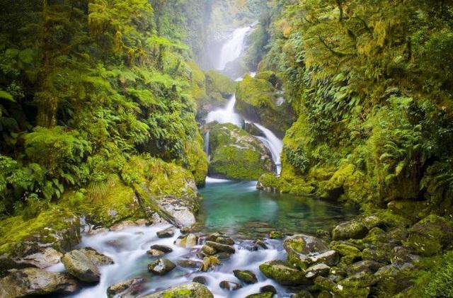 Thác nước Mackay nằm trên tuyến đường Miford ở New Zealand có vẻ đẹp như thực như mơ. Ước tính hàng năm có khoảng 14.000 người đi bộ qua thác.