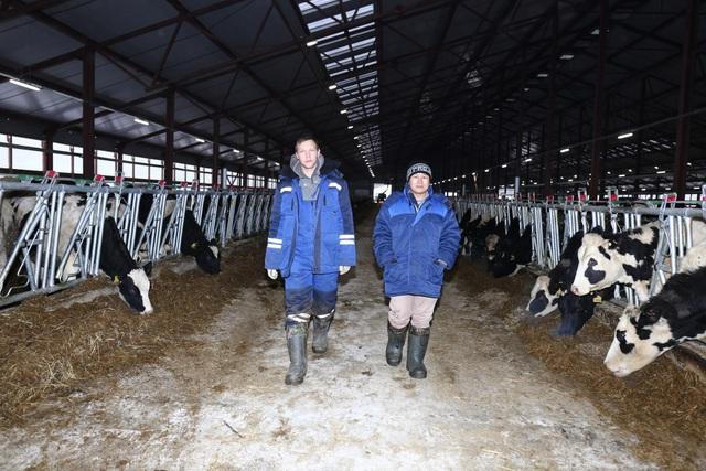 Maxim Pakhomenko- Bác sĩ Thú y của trang trại bò sữa TH Moscow và Lê Văn Thiện- Quản lý thú y của trang trại bò sữa TH Nghệ An đã trở thành đôi bạn thân sau gần 1 tháng làm việc với nhau