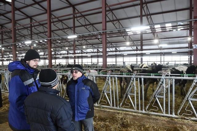 Các chuyên gia Nga, Việt Nam cùng trao đổi về tiến trình vận hành trang trại