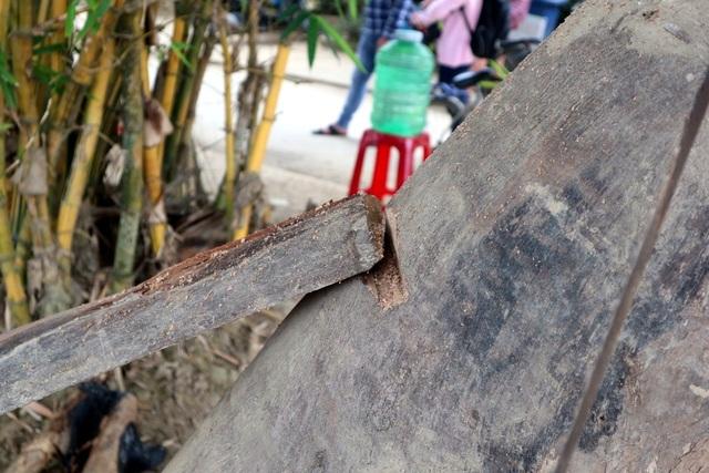 Về Hội An vui hội giỗ tổ nghề mộc Kim Bồng - 2