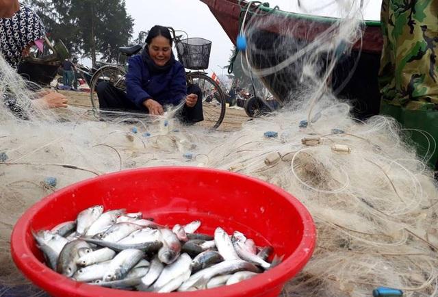 Niềm vui của những ngư dân trúng đậm cá ngày đầu năm mới