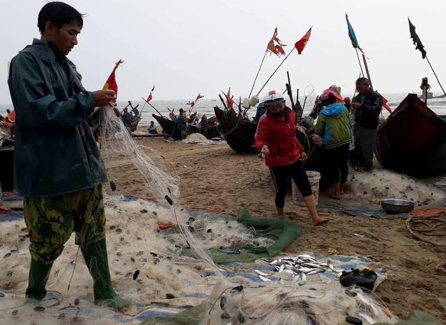 Hoạt động sản xuất đã trở lại bình thường với những ngư dân vùng ven biển Sầm Sơn