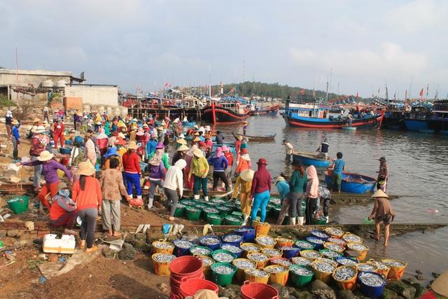 Sau một đêm ra khơi, tàu cá của ngư dân xã Tịnh Kỳ có thể đánh bắt được từ 3 - 5 tấn cá cơm