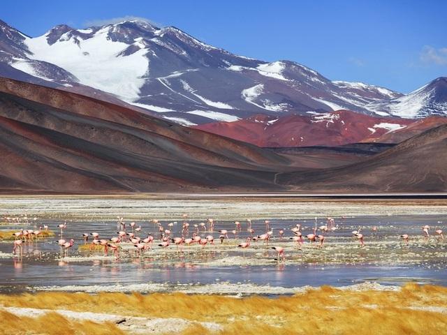 12 bức ảnh quyến rũ bạn đến Argentina - 12