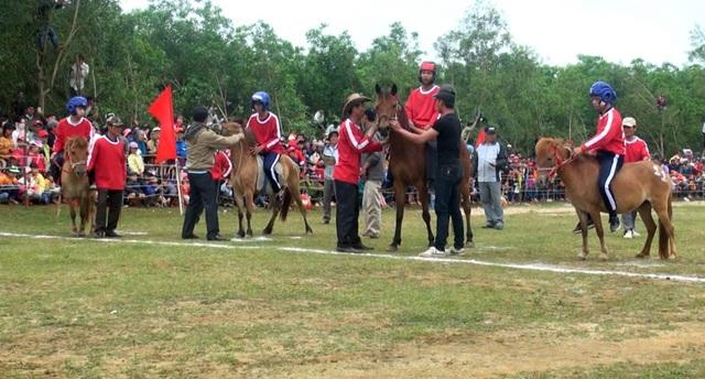 Các ngựa đua được đưa vào vạch xuất phát