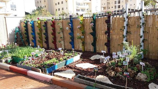 Vườn hoa nhỏ này là sản phẩm của cả phụ huynh lẫn các em bé khuyết tật cùng thực hiện trong khuôn viên trường.