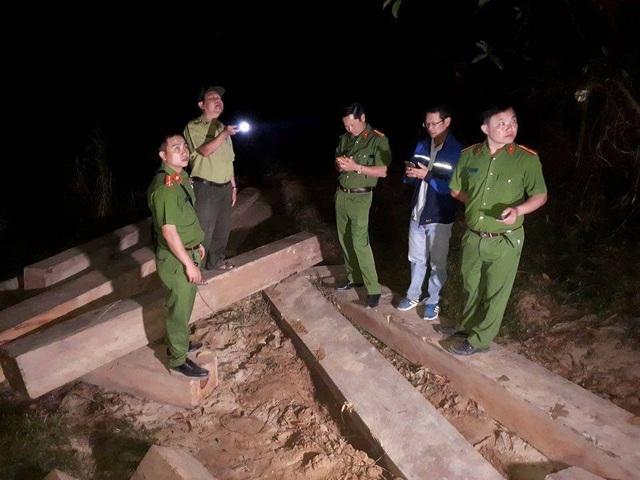 Cơ quan chức năng tiến hành canh giữ số gỗ tránh lâm tặc quay lại cướp gỗ lậu (ảnh CQĐT)
