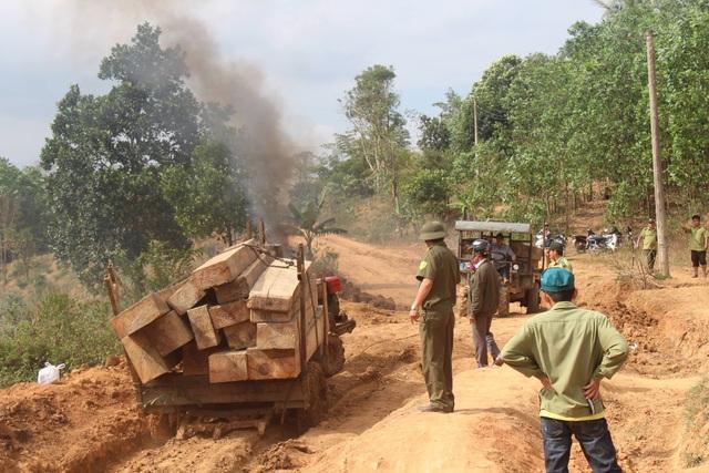Xe máy cày chở theo lượng gỗ lớn bị bắt giữ