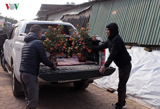 Với những khách hàng ở xa, hoặc đặt mua cây to, chủ vườn phải thuê cả xe tải, xe bán tải để vận chuyển cây.