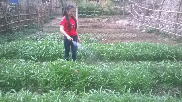 Học sinh chăm sóc vườn rau của trường để cải thiện bữa ăn hằng ngày.