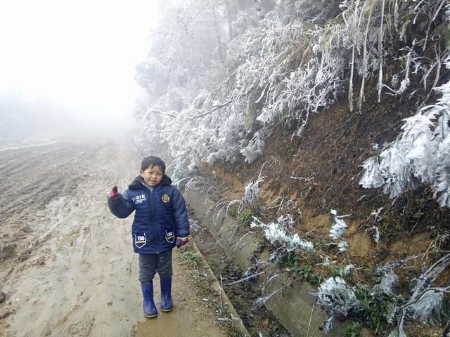 Hình ảnh băng tuyết phủ trắng vùng cao Lào Cai - 1