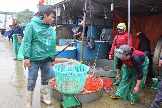 Thương lái đang cân cá chép đỏ để bán cho khách mua lẻ. (Ảnh: Hồng Vân)