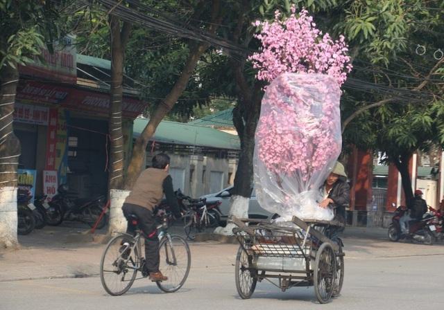 Những người chuyên chở hoa, cây cảnh kiếm tiền triệu mỗi ngày dịp cuối năm