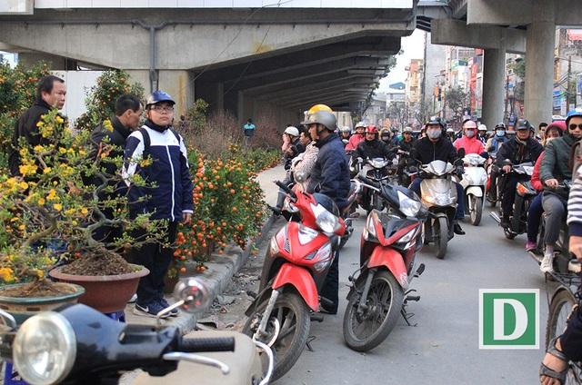 Khu vực đường Láng gần Ngã tư sở, nhiều người dừng xe dưới lòng đường để xem quất cảnh và những cành đào Tết gây ùn ứ giao thông qua đây.