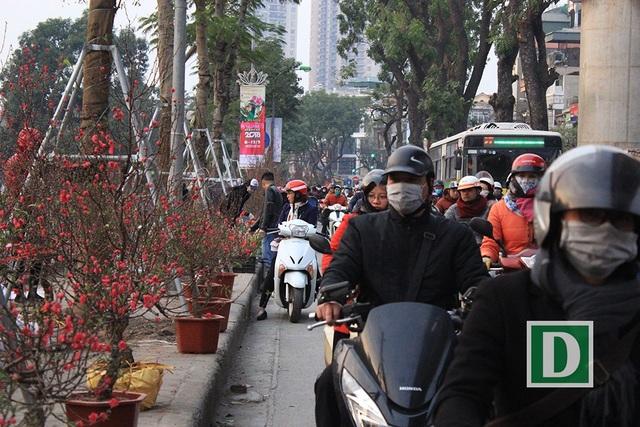 Giao thông Hà Nội vào những ngày giáp Tết trở nên ùn tắc hơn bao giờ hết. Giao thông đặc biệt khó khăn, lộn xộn ở các điểm bán hoa, cây cảnh chưng Tết.