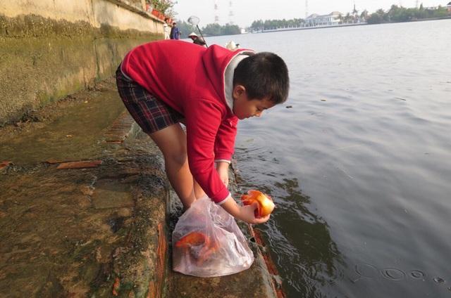 Bé trai tự tay thả cá chép tiễn ông Táo về trời