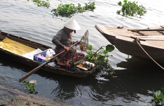 Một người phụ nữ dùng vợt bắt lại số cá chép vừa được người dân thả ra.