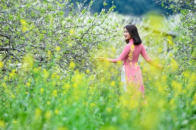 Xuân về đẹp tuyệt giữa rừng hoa mận trắng Mộc Châu - 7