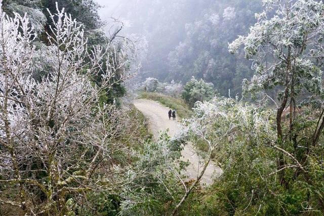 Đây là hiện tượng thời tiết khắc nghiệt, có hại cho mùa màng nhưng lại tạo ra cảnh thiên nhiên khá kỳ thú