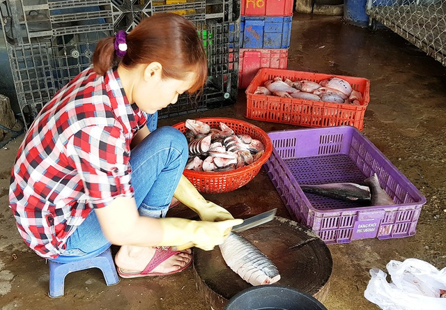 Dù giá cao nhưng cũng khá nhiều người mua cá lóc đồng để phục vụ bữa cơm gia đình.