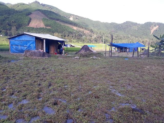 Những túp lều tạm được dựng lên giữa đồng từ trước Tết Nguyên đán.