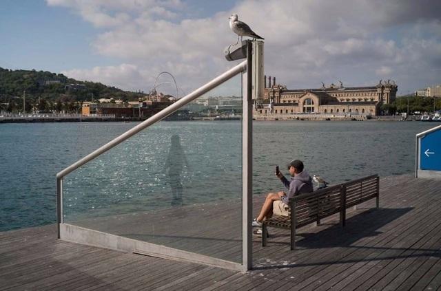 Bóng phản chiếu trên tấm kính và hành động giơ máy lên chụp của người đàn ông khiến người xem chợt giật mình.