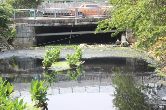 Cống thoát nước từ kênh Phần Lăng sang hồ chứa nước Bàu Trảng đầy rác thải.