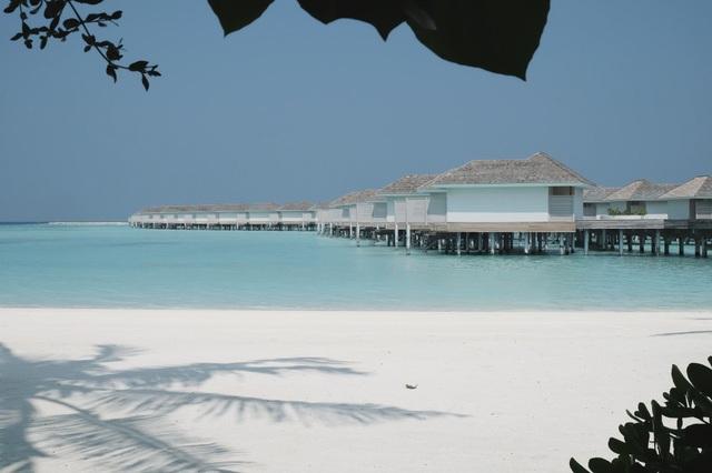 Những hình ảnh tuyệt đẹp của thiên đường du lịch được bộ đôi chia sẻ. Quỳnh Chi cho biết: Từ sân bay Malé, có 2 cách để đến resort, 1 là đi cano, 2 là đi thuỷ phi cơ. Nhà mình lựa chọn đi thuỷ phi cơ thì sẽ phải trả mỗi người 550$ (khoảng gần 13 triệu) tiền vé khứ hồi. Đi thuỷ phi cơ tới các resort thường sẽ mất khoảng 45 phút. Sau khi đặt được vé máy bay sẽ là công cuộc tìm khách sạn. Đây là công cuộc đau đầu nhất, căng thẳng nhất vì có đến hàng trăm resort tại Maldives mà cái nào thì cũng có những điểm hấp dẫn riêng nên phải cân đong đo đếm rất cẩn thận. Nếu đi vào thời lễ tết thì mình khuyên mọi người nên đặt sớm ít nhất là 6 tháng thậm chí là hơn thế vì khi bọn mình tìm resort thì rất nhiều cái đẹp đã full phòng rồi.