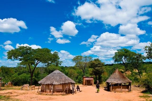 Vụ việc kinh hoàng xảy ra tại một ngôi làng ở Zimbabwe.