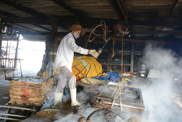 Quảng Ngãi: Rộn ràng mùa hấp cá cơm - 4