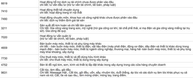 Một số ngành nghề mà Hanoi Valu đăng ký sau khi đã đổi tên (ảnh chụp màn hình)