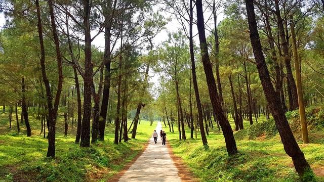Bí ẩn về lăng mộ của vị vua Nguyễn - 1
