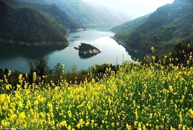 Hòn đảo đặc biệt thu hút khách vào mùa xuân