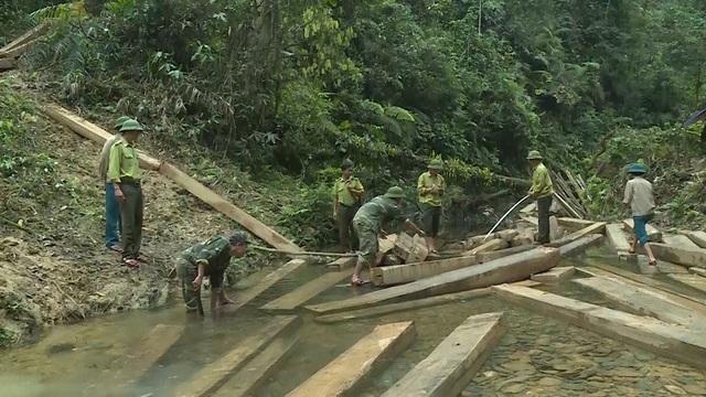 Do địa hình nơi xảy ra vụ việc rất hiểm trở, cách xa khu dân cư hơn 20km đường rừng, nên sẽ phải mất tầm 1 tháng nữa, các lực lượng chức năng mới có thể đưa được toàn bộ số gỗ tang vật này ra khỏi khu rừng.