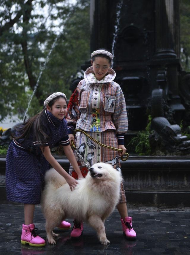 Cún cưng được đưa lên sàn diễn thời trang và trở thành người mẫu đặc biệt.