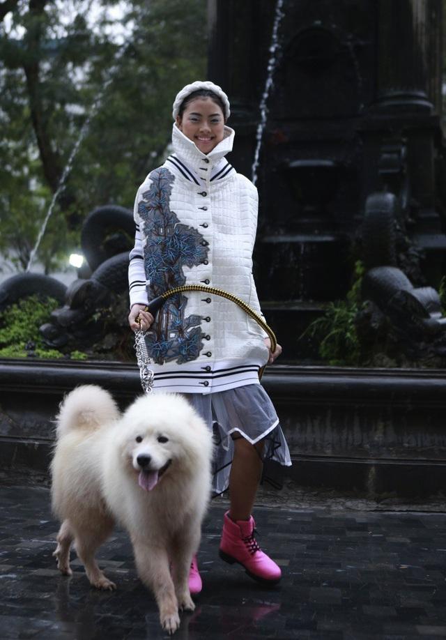 Người mẫu đội ngựa vàng mã, dắt cún cưng sang chảnh lên sàn diễn thời trang - 16