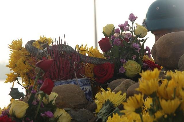 Con rắn được đồn thổi là rắn thần xuất hiện tại ngôi mộ