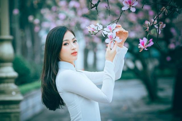 Nữ sinh Hà thành ngọt ngào bên sắc hoa ban - 3
