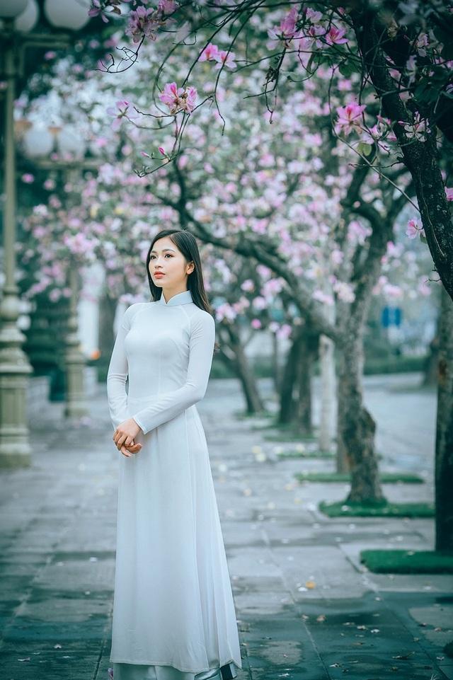 Nữ sinh Hà thành ngọt ngào bên sắc hoa ban - 2