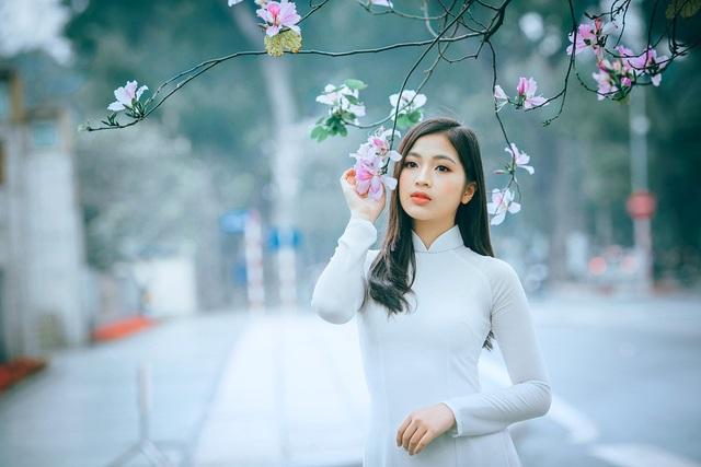 Nữ sinh Hà thành ngọt ngào bên sắc hoa ban - 1