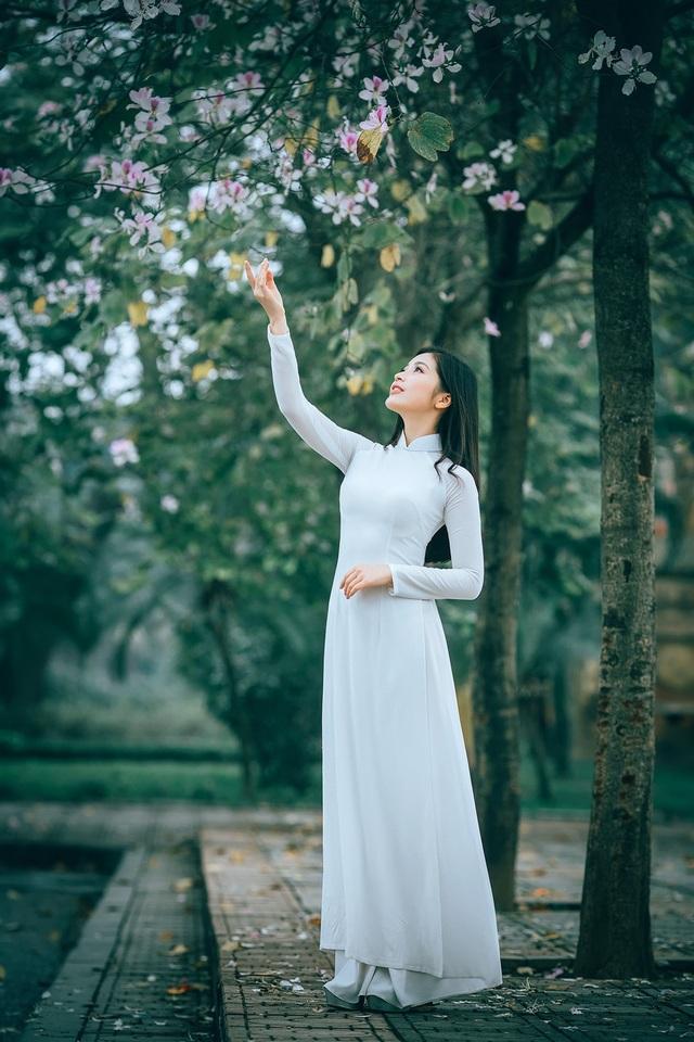 Nữ sinh Hà thành ngọt ngào bên sắc hoa ban - 12