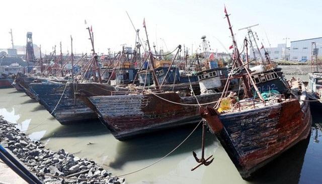 Tàu cá Trung Quốc bị lực lượng tuần duyên Hàn Quốc bắt giữ tại một cảng ở Incheon Ảnh: YONHAP