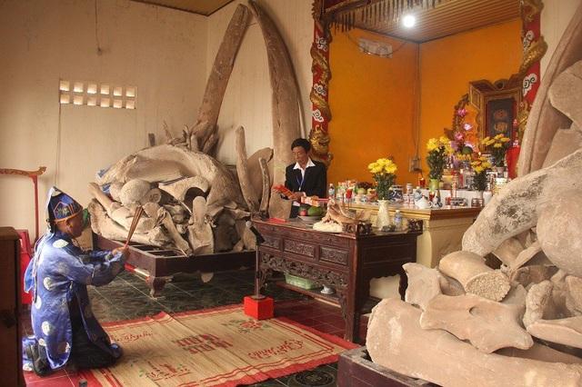 Bên trong Linh Ngư Miếu, nơi thờ hai bộ xương cá voi khổng lồ mà người dân gọi là cá Ông và cá Bà