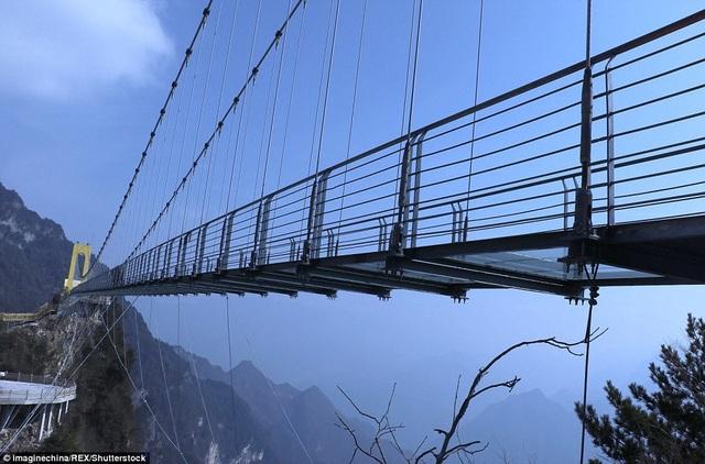 Cây cầu chịu được trọng lượng tối đa 80 khách cùng lúc