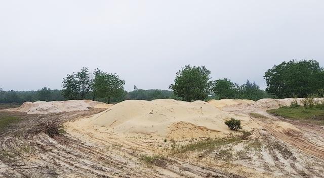 Hơn chục đống cát lớn ở một bãi cát lậu tập kết